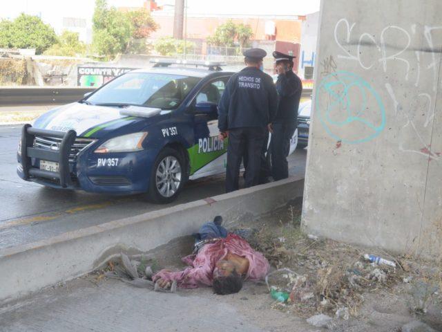 autopista, México-Puebla, atropellado, Vialidad del Estado, SUMA, muerto