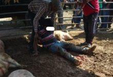 Riña, ganaderos, cerdos, baleado, fuga, camioneta, animales, discusión, urgencias médicas, Tepeaca, ambulacia