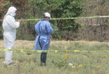 osamenta, restos humanos, Santa María Xonacatepec, peritos, Fiscalía General, diligencias, investigaciones