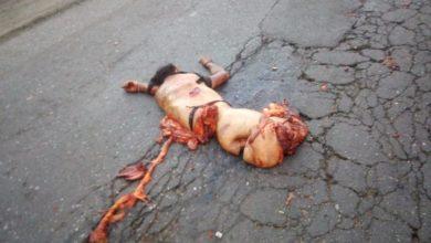 Embestido, cuerpo, partido a la mitad, Policía Municipal, carretera, embestido, Amozoc, carretera Puebla-Tehuacán, atropellado
