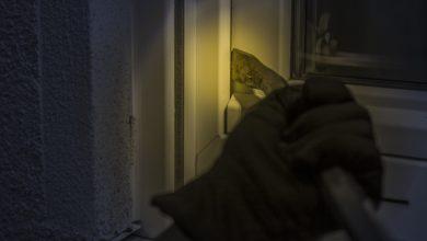 Colonia Viveros del Valle, Policía Municipal, detenidos, siete, sujetos, Camino Real a Manzanilla, DERI, 911, llamadas de auxilio, estufa, lavadora, tanque para gas, escalera metálica, herramienta, allanamiento, Ministerio Público, carpeta de investigación