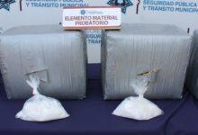 Luz Amariani, Sinaloa, Veracruz, marihuana,, crystal, 70 kilos, unidad canina, SSPTM, CAPU, perro