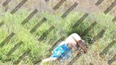Cadáver, embolsado, San Francisco Ocotlán, Periférico Ecológico, 911, BULTO, paramédicos, complexión robusta, arma punzocortante, FGE, abandonado