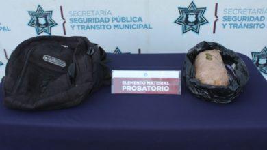 detenido, CAPU, Teziutlán, Oaxaca, ejemplar canino, perro, detección, narcóticos, marihuana, Código Rojo, Puebla, Noticias, Nota Roja