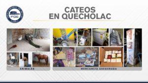 Quecholac, detenidos, cateos, aseguramiento, unidades, carga, particulares, robadas, mercancía, FGE, Código Rojo, Nota Roja, Puebla, Noticias