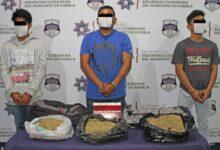 narcomenudeo, marihuana, CAPU, Bulevar Norte, SSC, Grupo K9, Código Rojo, Nota Roja, Puebla, Noticias