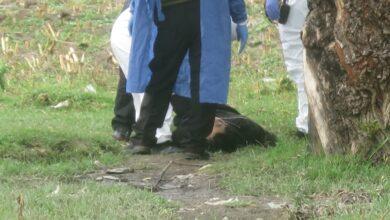 San Isidro Castillotla, cadáver, hombre, disparo, barranca, Angelópolis, Código Rojo, Nota Roja, Puebla, noticias
