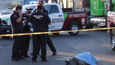 Atropellado, Puebla – Orizaba, autopista, masa encefálica, fracturas, SEMEFO,