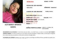 FGE, Alerta Amber, menor de edad, protocolos de búsqueda, Delitos de Desaparición Forzada de Personas y Desaparición Cometida por Particulares, Lares de San Alfonso