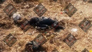 bebé, muerto, calcinado, vías férreas, termina, ruta, santa margarita, chachapa, código rojo