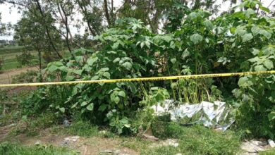 cráneo destrozado, sin vida, victima , Cholula- Calpan, San Pedro Cholula, Protección Civil, Bomberos, FGE