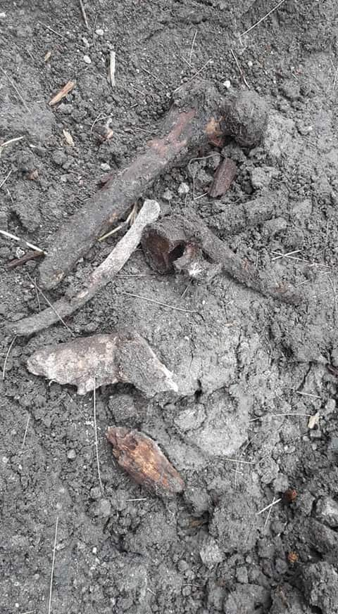 tumba, huesos, esparcidos, san felipe hueyotlipan, órden, trabajadores, panteón, código rojo